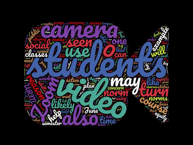 WordCloud using the text from recently published paper about why highered students don't turn on their cameras during Zoom classes. Provided by Frank Castelli